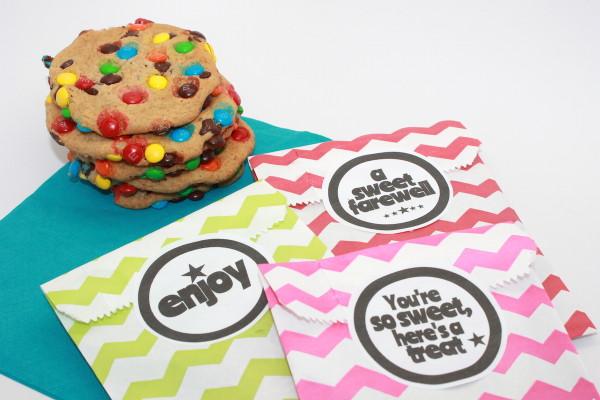 M&M Cookie Recipe + Party Favor Printable handmadebykelly.com; onlinelabels.com