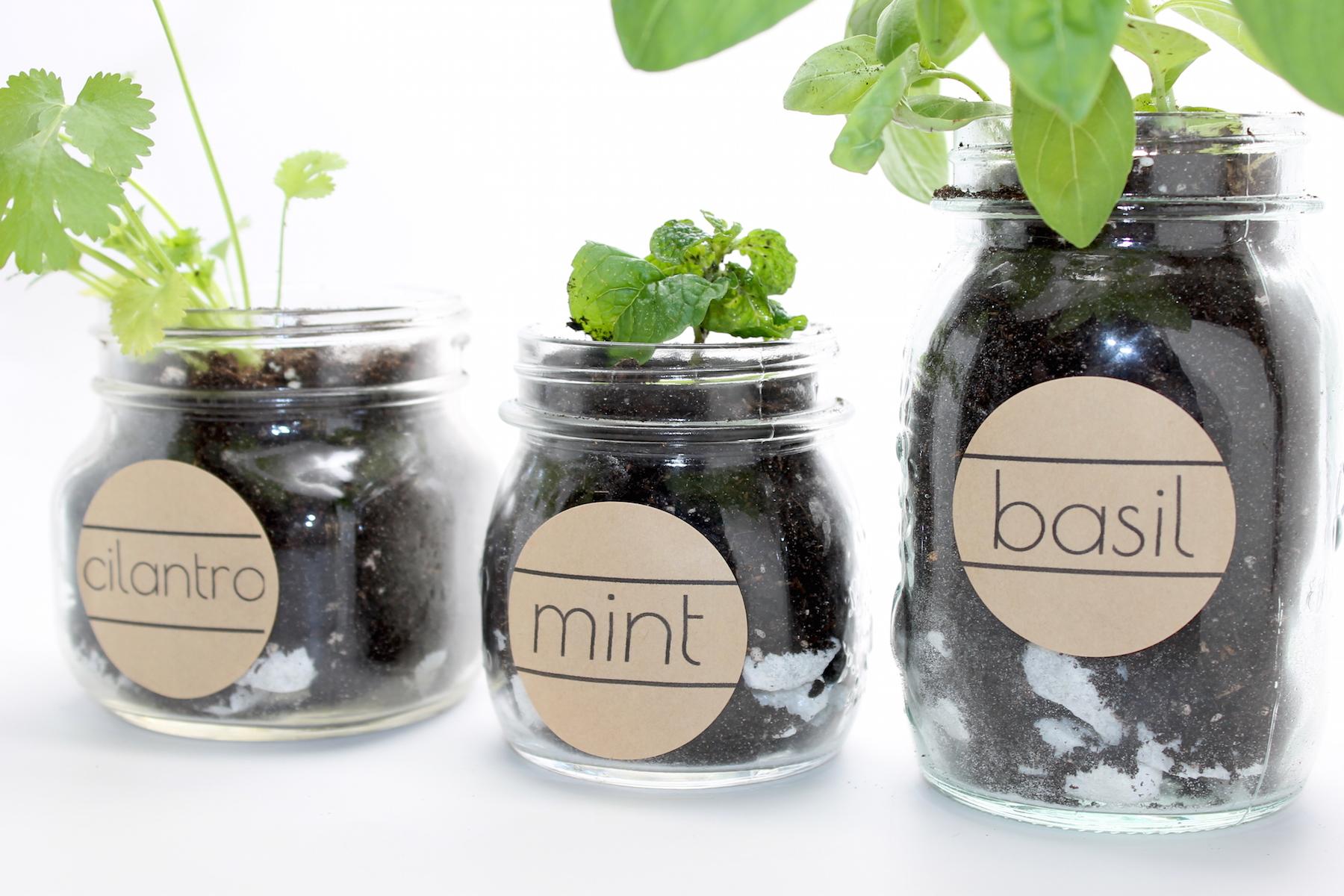 Herb Garden Labels; onlinelabels.com; handmadebykelly.com copy