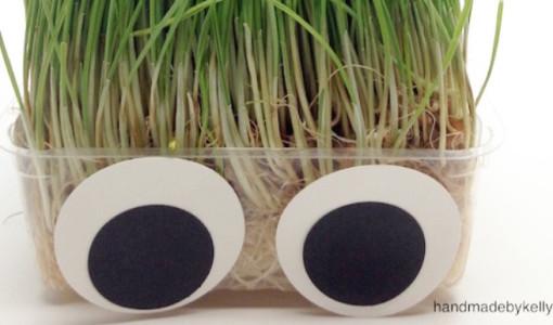 5-minute DIY Silly Grass Head Craft; handmadebykelly.com