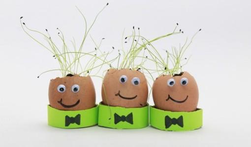 handmadebykelly.com; eggshell seedlings; mnn.com